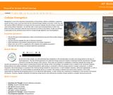 AP Biology : Cellular Energetics